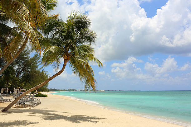 caribbean: dream beach - jamaica stock photos and pictures