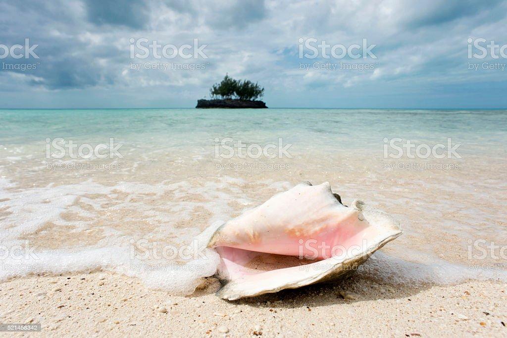 Caribbean Dream stock photo