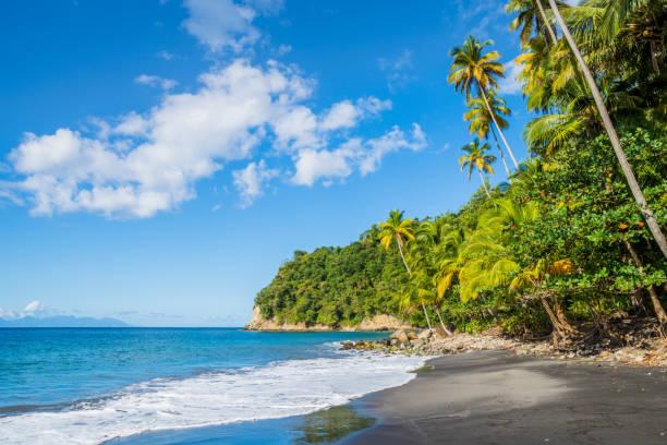 Caribbean feeling on a Martinique wild beach