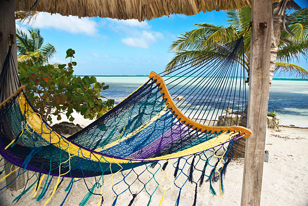 Caribbean Hammock stock photo