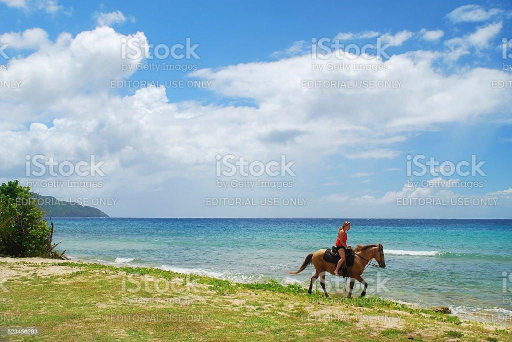Caribbean Horseback stock photo