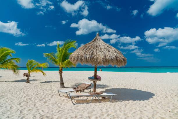 caribische eiland aruba - aruba stockfoto's en -beelden