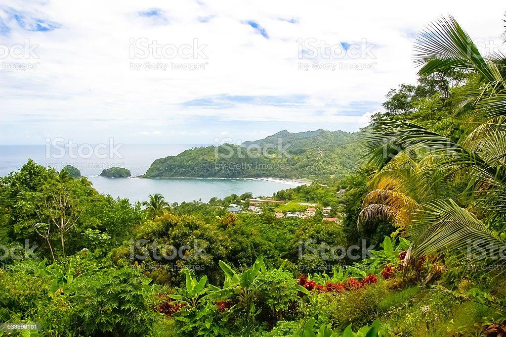 Caribbean island stock photo