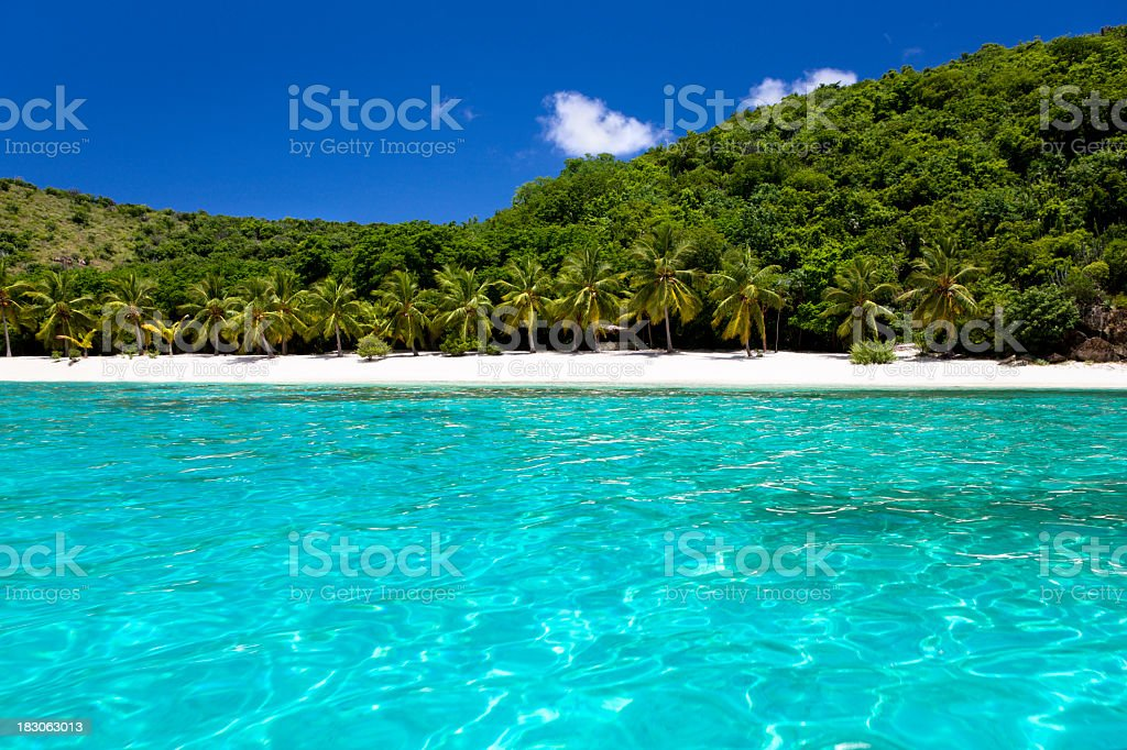 Caribbean island with white sand beach and palm trees royalty-free stock photo