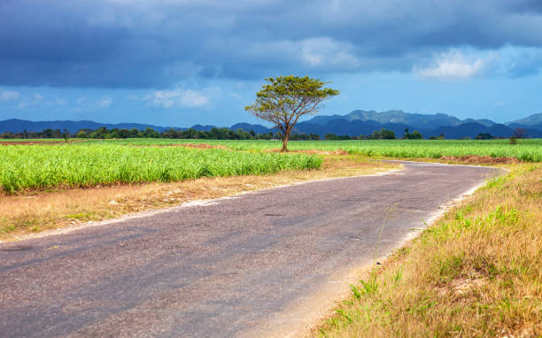 Caribbean landscape - Jamaica stock photo