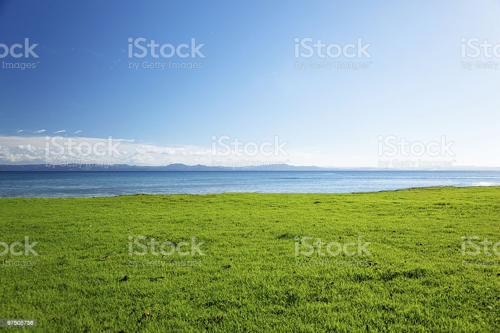 Caribbean sea and field of green grass royalty-free stock photo