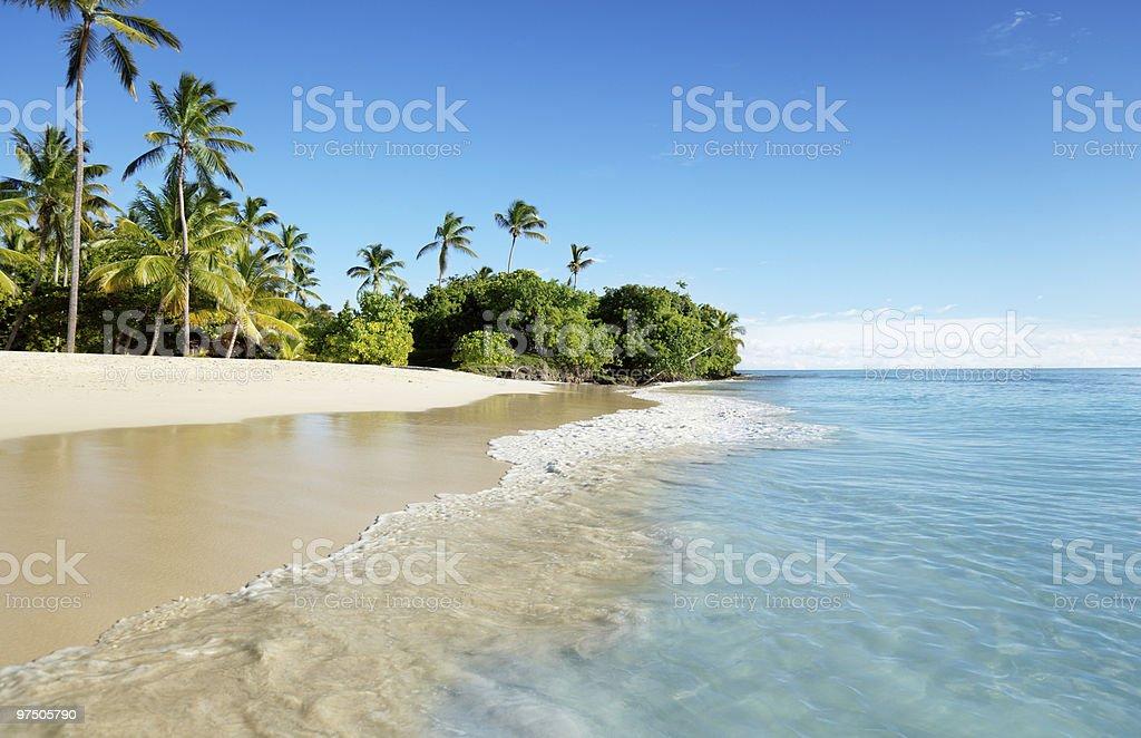 caribbean sea and palms royalty-free stock photo