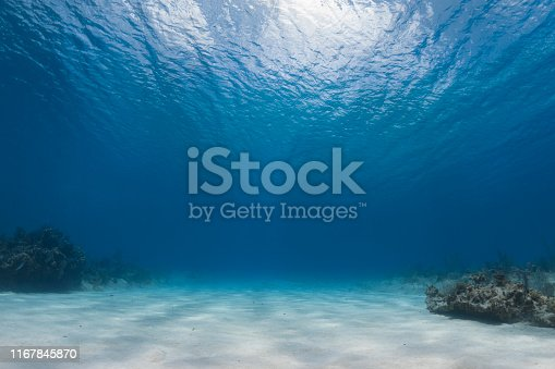 Undersea view and ocean floor in Cayman Brac Island, Cayman Islands