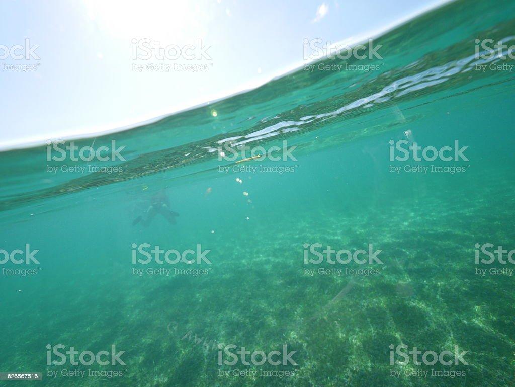 caribbean sea split level stock photo