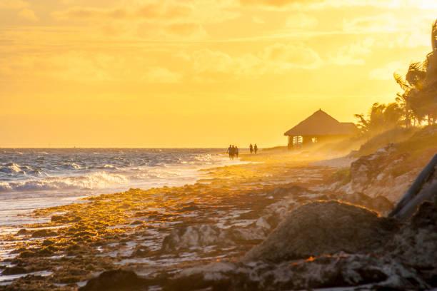 Caribbean sunrise seascape stock photo