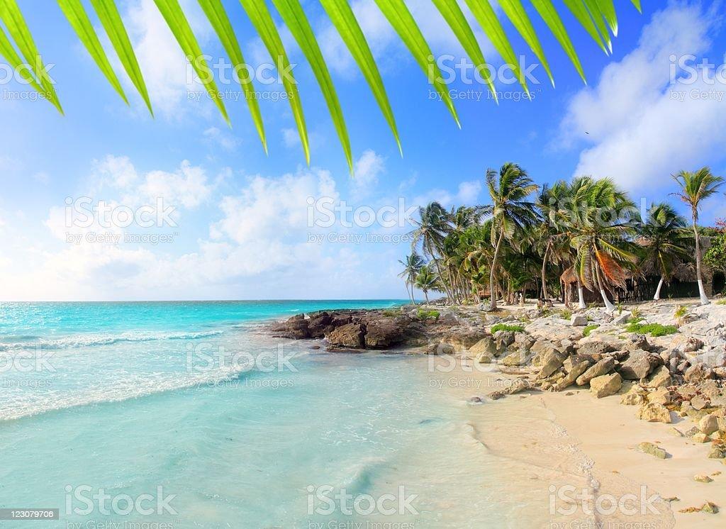 Caribbean Tulum Mexico tropical turquoise beach stock photo