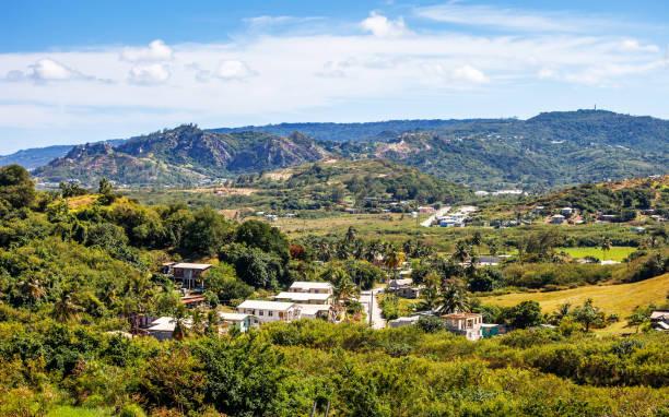 Caribbean view - Barbados stock photo