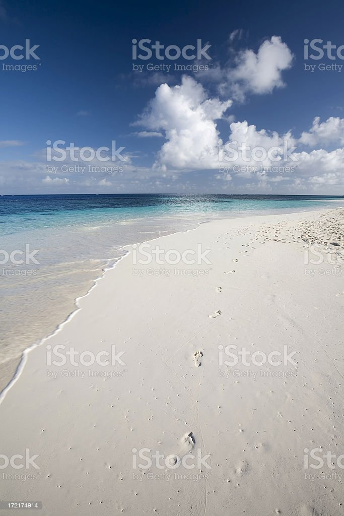 Caribbean White Sand Beach royalty-free stock photo