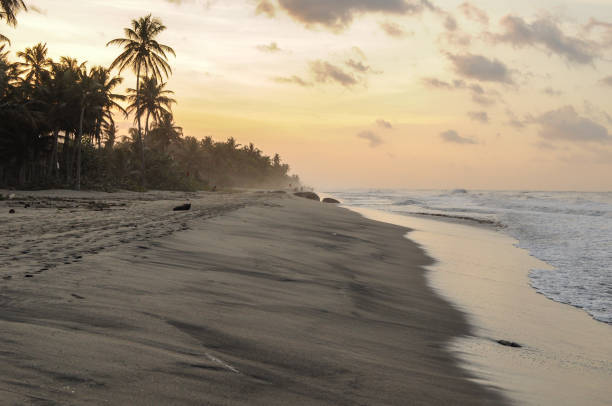 Caribean Beach in Colombia Sunset at Caribean Beach in Colombia palomino stock pictures, royalty-free photos & images