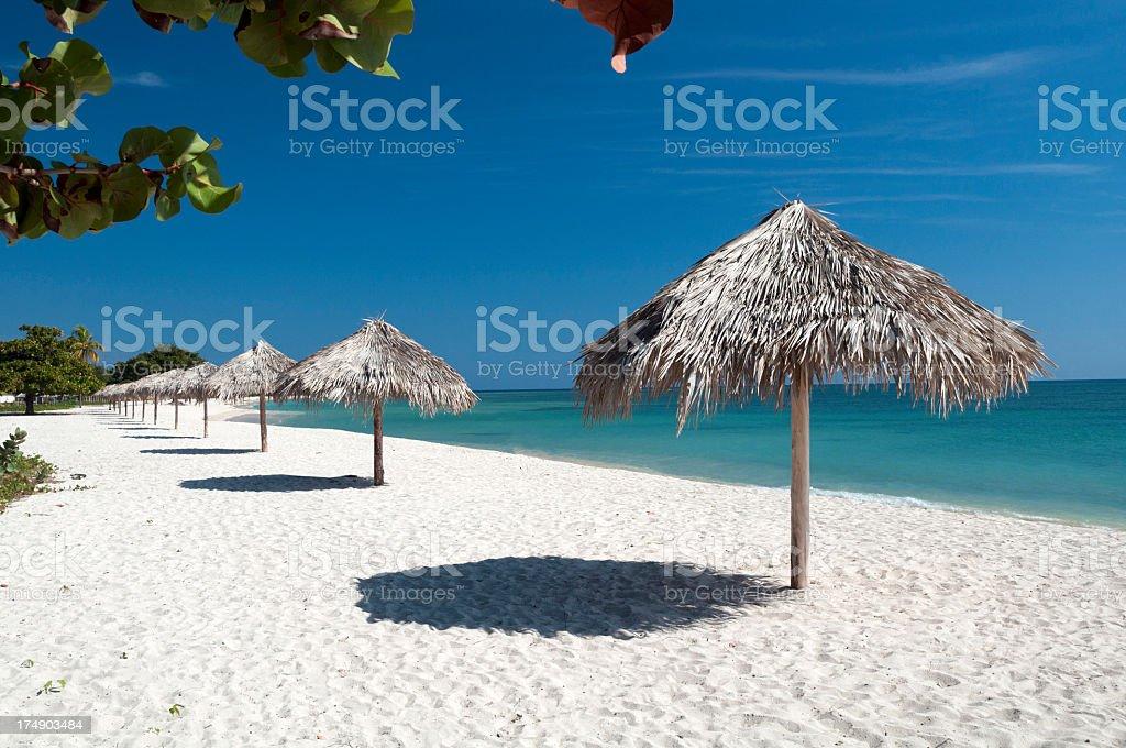 Caribean beach royalty-free stock photo