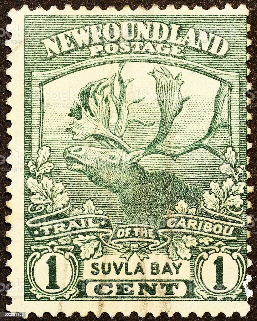 Caribou on very old stamp of Newfoundland stock photo