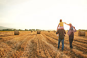 istock Caring father and grandpa carrying curious sister on their shoulder while enjoying sunset at the wheat field 1257795783