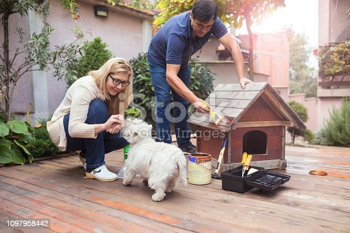 Mature couple building dogs house for their pet