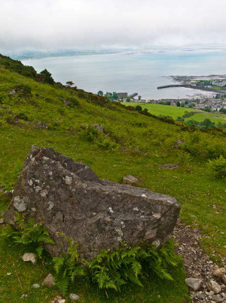 Carlingford Town and Lough  from Tain Way, Slieve Foy stock photo