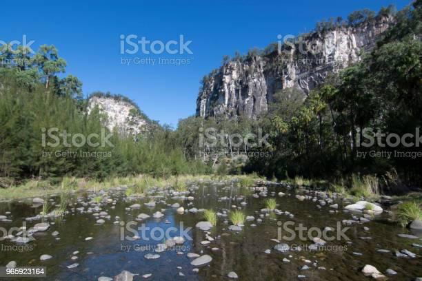 Carnarvon Gorge Queensland - Fotografias de stock e mais imagens de Ajardinado