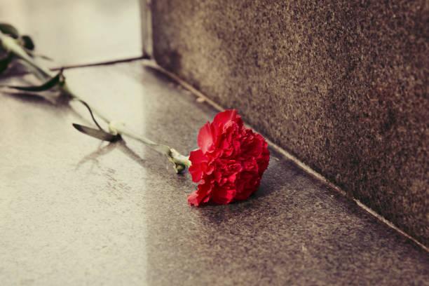 Carnation flowers laid on the granite monument picture id1210071866?b=1&k=6&m=1210071866&s=612x612&w=0&h=efkstzphswvc0pwtndahqh4fljwcoxzjij7alc550ww=