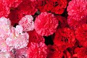 造花のカーネーション