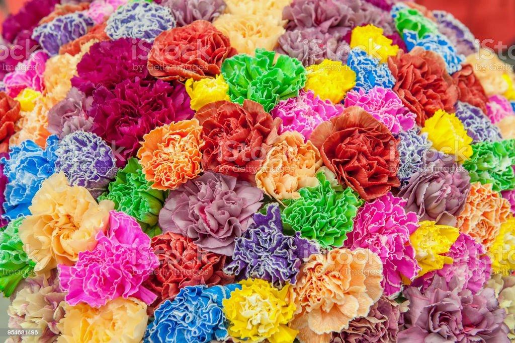 Claveles Rosas Y Verdes Las Variedades Modernas En Un Ramo