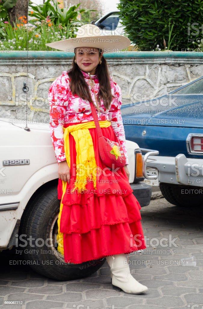 Carnival in Mexico stock photo