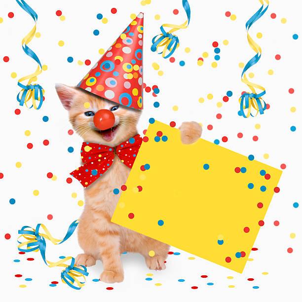 Carnival party cats hangover picture id536919611?b=1&k=6&m=536919611&s=612x612&w=0&h=pzldp iymiufjakihsd8mbz4lfsneydlipkzriog02o=