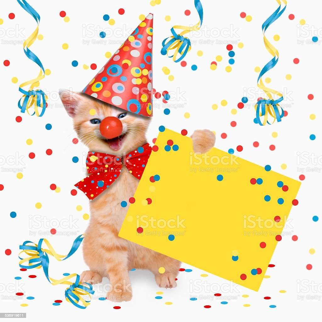 Carnival Party, cats, hangover stock photo