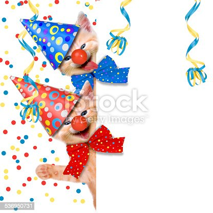 istock Carnival Party, cats, hangover 536950731