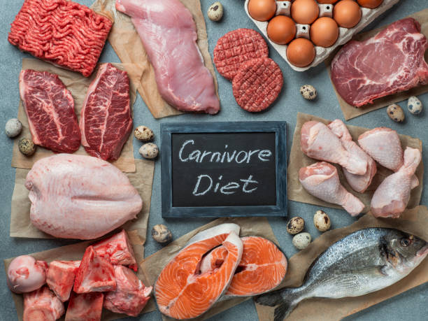 Carnivore diet, zero carb concept, top view Carnivore diet concept. Raw ingredients for zero carb diet - meat, poultry, fish, seafood, eggs, beef bones for bone broth and words Carnivore Diet on gray stone background. Top view or flat lay. carnivorous stock pictures, royalty-free photos & images