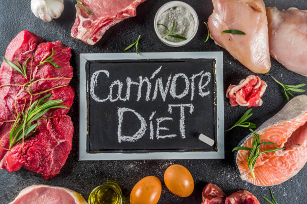 carnivore protein diet background - carnívoro imagens e fotografias de stock