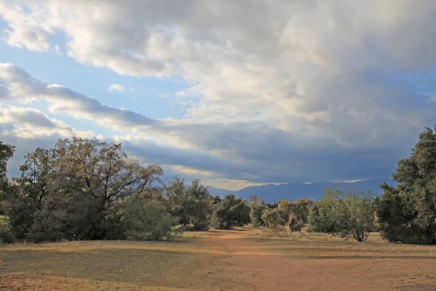 Caroline Park Redlands Storm stock photo