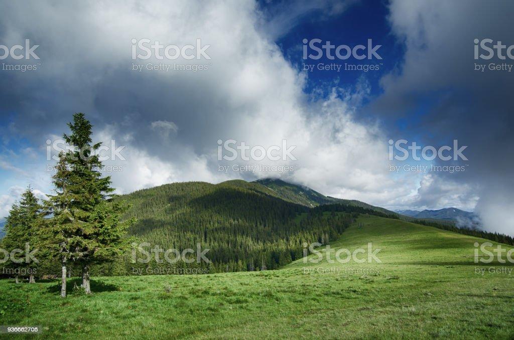 Carpathian mountain landscape stock photo