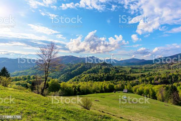 Photo of Carpathians countryside in springtime