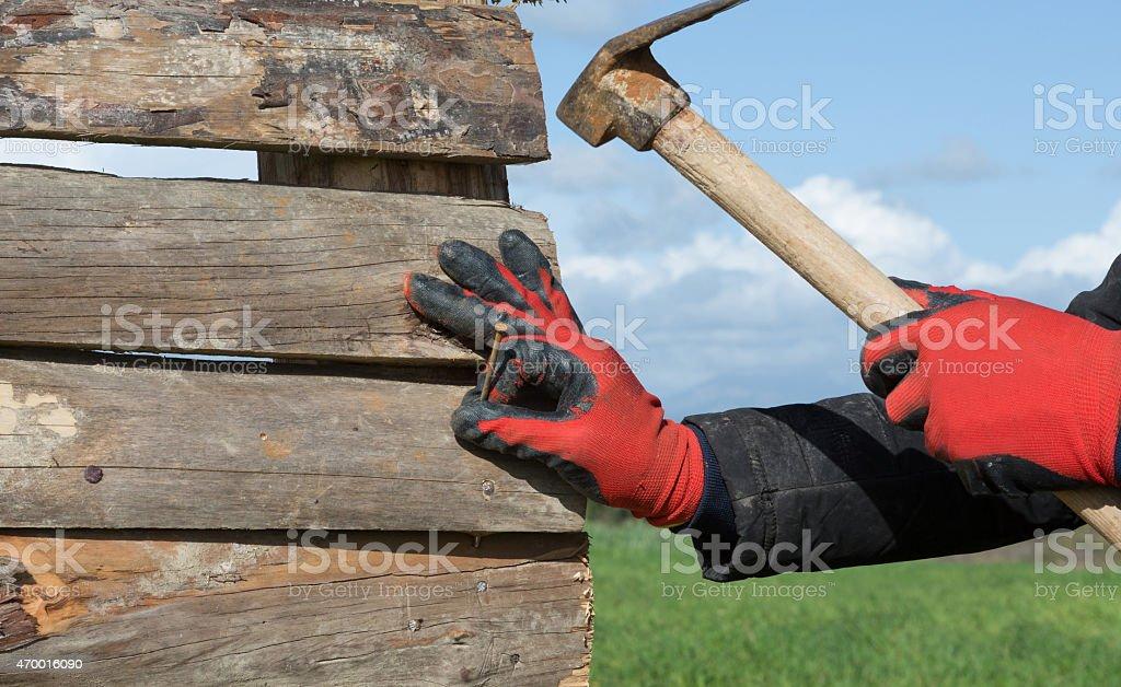 carpenter work wit hammer stock photo
