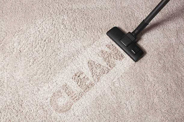 Image result for carpet cleaning photo