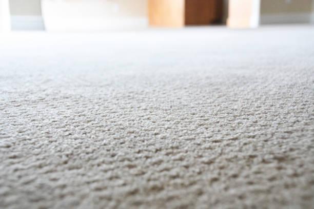 tapijt in een huis - tapijt stockfoto's en -beelden