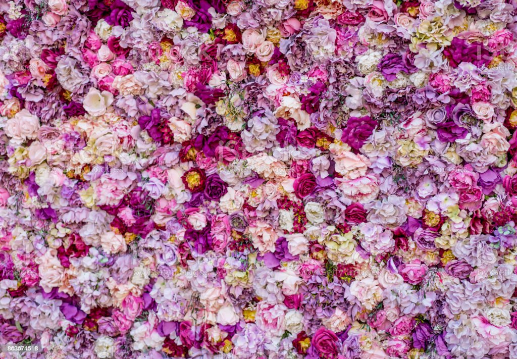 Carpet of beautiful flowers stock photo
