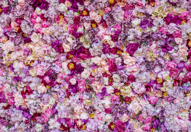 carpet of beautiful flowers - flowers stock photos and pictures