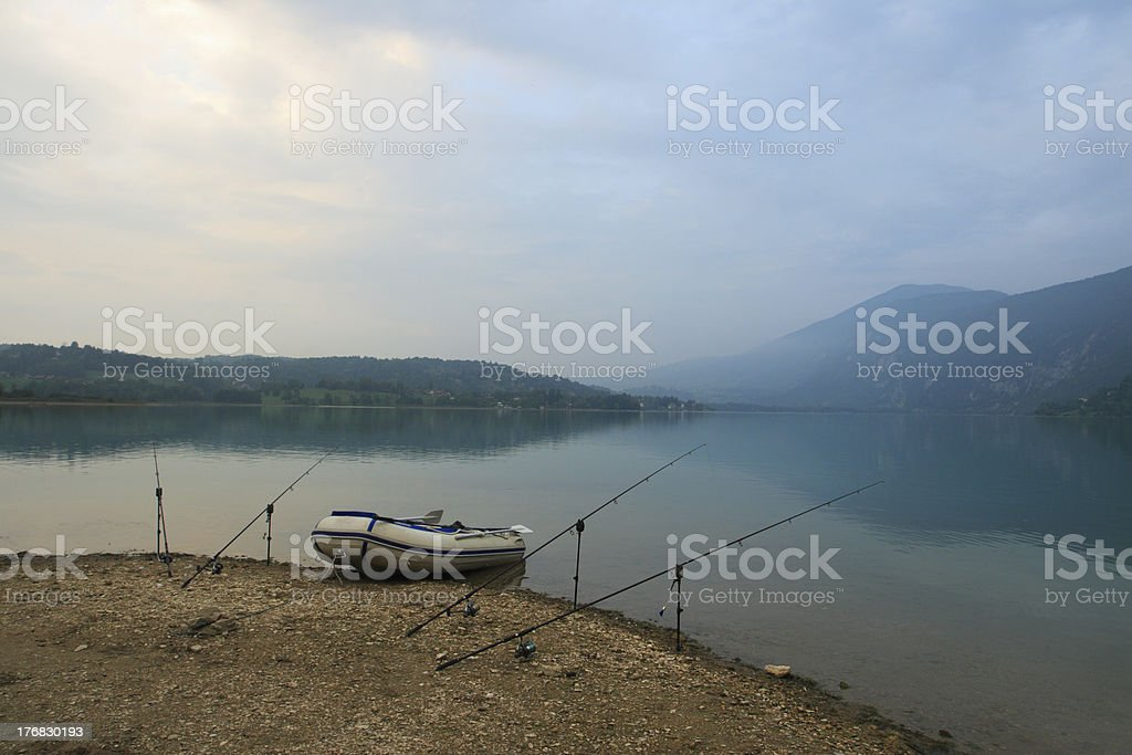 carps fishing in lake royalty-free stock photo