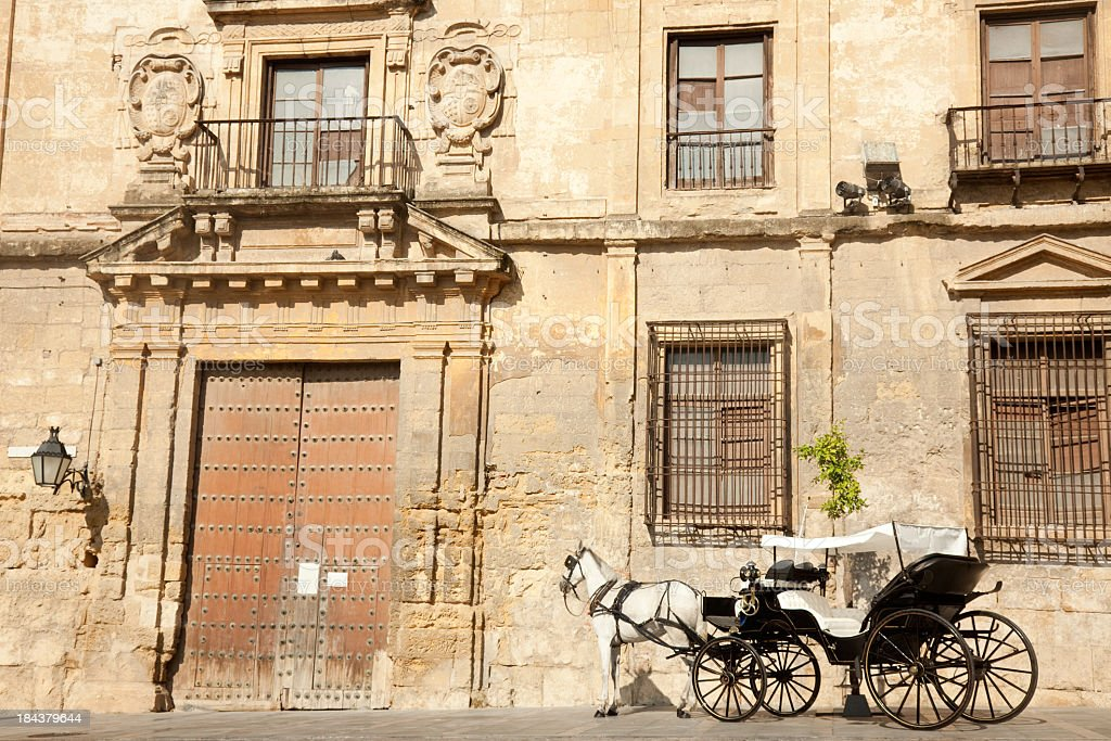 Carriage, horse and old construction, Cordoba, Spain royalty-free stock photo