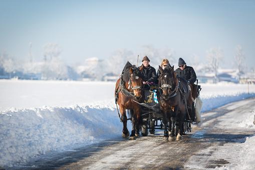Carriage in Hohenschwangau, Germany