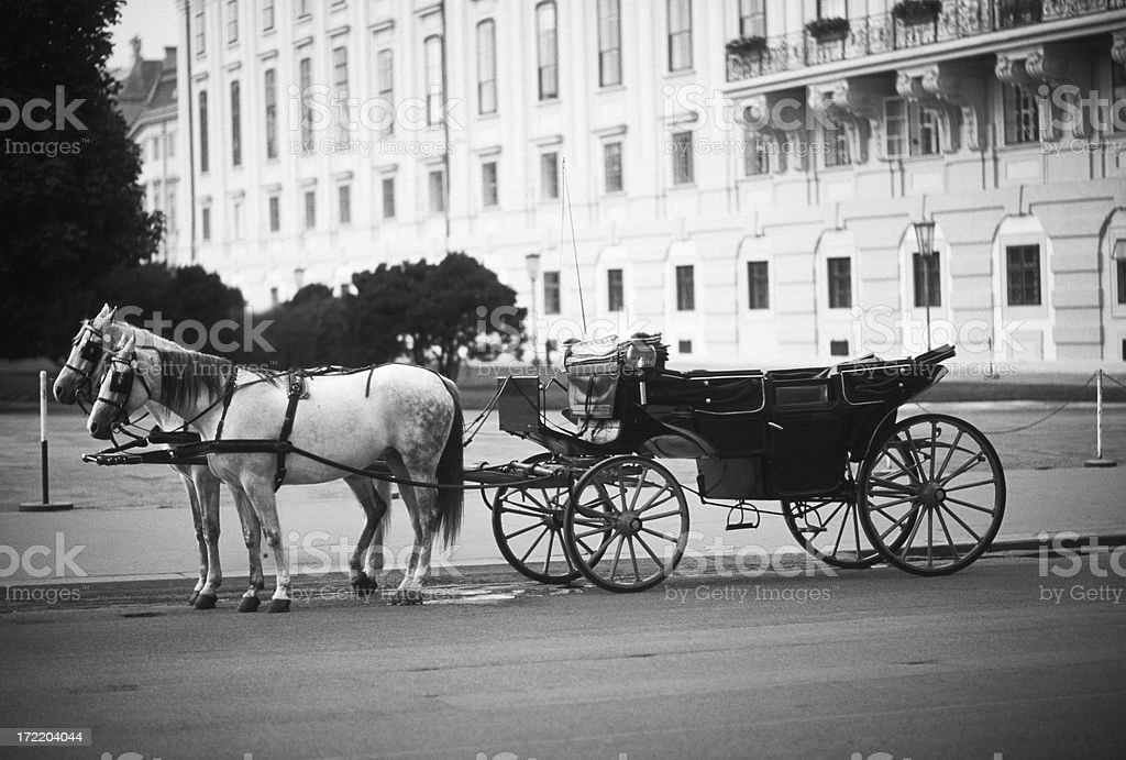 Carriage in Vienna royalty-free stock photo