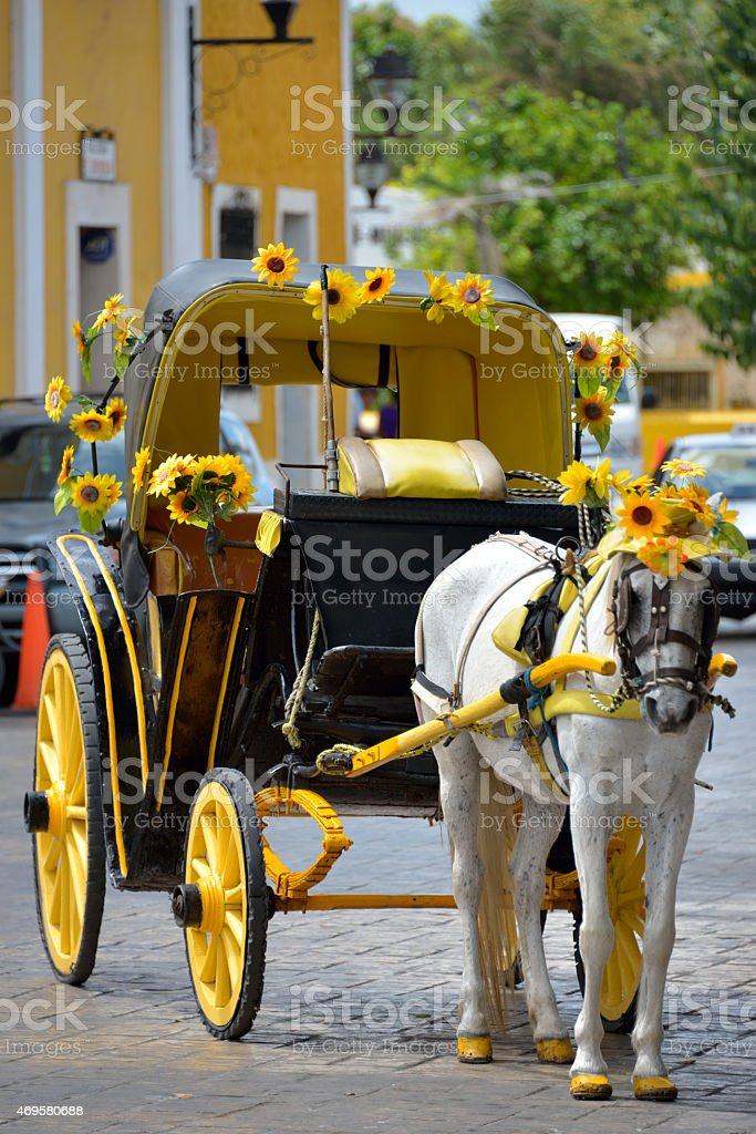Carriage pulled by horse stock photo