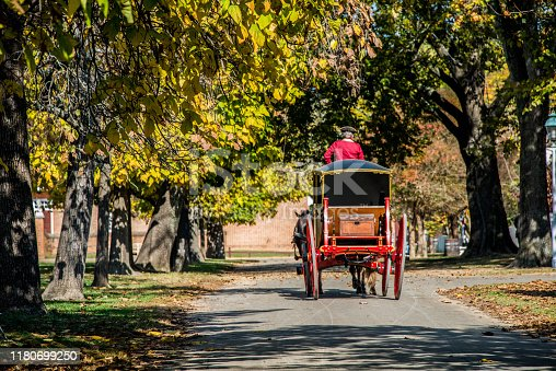 A horse drawn carriage rolls down a tree-lined street in Williamsburg, Virginia