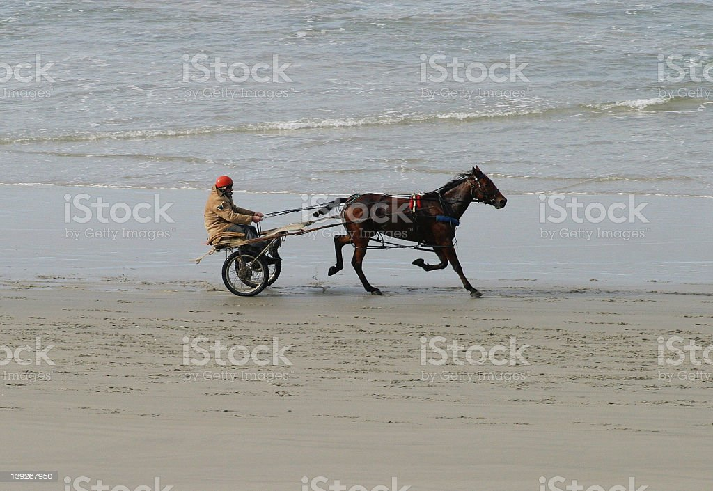 Carriage Rider on the sand royalty-free stock photo