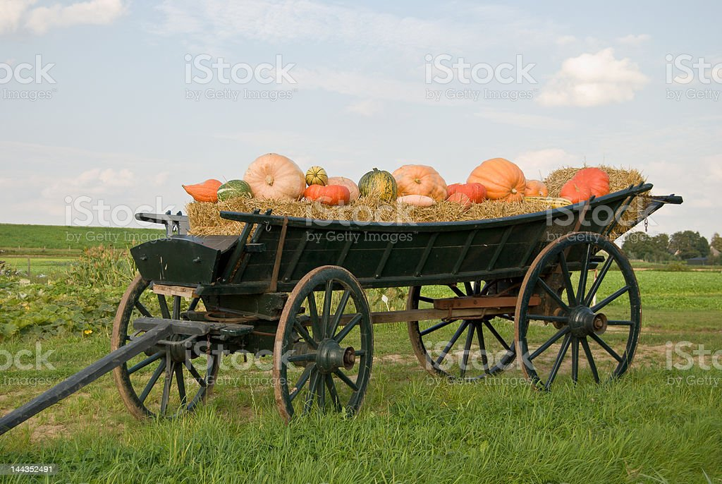 Carriage with straw and pumpkins royalty-free stock photo