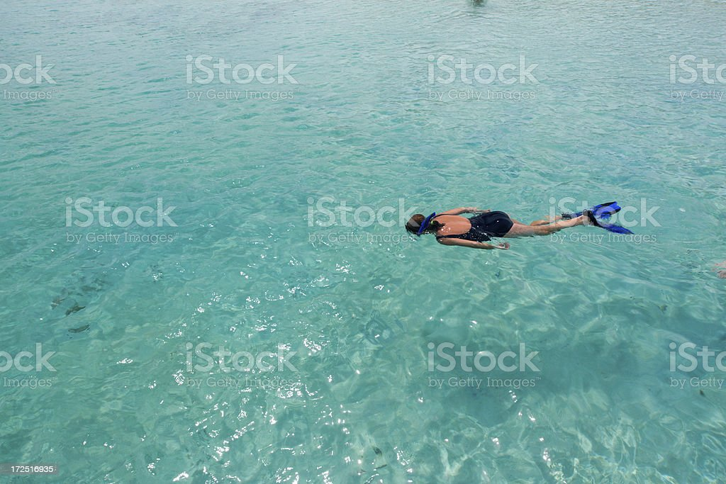 Carribbean snorkel royalty-free stock photo